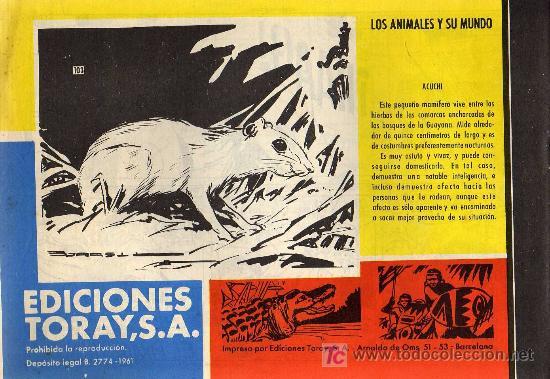 Tebeos: TAMAR - Nº 103 - BORRELL/ACEDO - EDICIONES TORAY 1961 - ORIGINAL, NO FACSIMIL - Foto 2 - 11313371