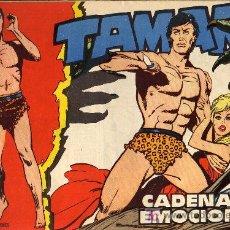 Tebeos: TAMAR - Nº 19 - BORRELL/ACEDO - EDICIONES TORAY 1961 - ORIGINAL, NO FACSIMIL . Lote 16002332