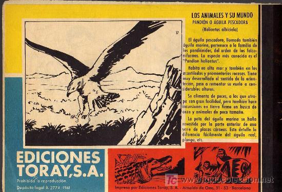 Tebeos: TAMAR - Nº 17 - BORRELL/ACEDO - EDICIONES TORAY 1961 - ORIGINAL, NO FACSIMIL - Foto 2 - 15991052