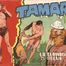 Tebeos: TAMAR Nº 95 - LA LLAMADA DE LA SELVA - ED. TORAY - 1961. Lote 30107414