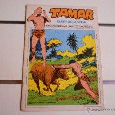 Tebeos: TAMAR Nº 13. Lote 42912853