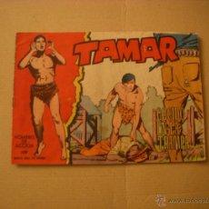 TAMAR Nº 132, EDITORIAL TORAY
