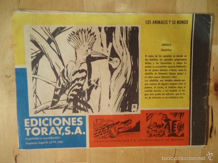 Tebeos: CÓMIC TAMAR HOMBRES DE ACCIÓN 58 UN ENCUENTRO SORPRENDENTE EDICIONES TORAY LOS ANIMALES Y SU MUNDO - Foto 3 - 56220233