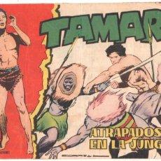 Tebeos: TAMAR ORIGINAL Nº - 110 ,EDITORIAL TORAY 1961, DIBUJO ANTONIO BORRELL - . Lote 56285595