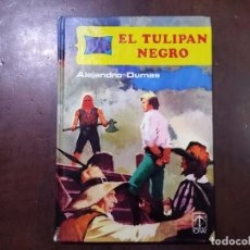 BDs: EL TULIPÁN NEGRO - ALEJANDRO DUMAS. Lote 72056310