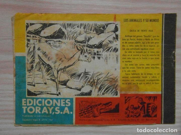 Tebeos: La civilizacion acecha. Tamar nº 31 de la linea Hombres de Accion. Editorial Toray. 1961 - Foto 2 - 99249227