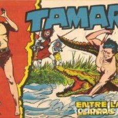 Giornalini: TAMAR- Nº 10 -ENTRE LAS LLAMAS- 1961-GRAN ANTº BORRELL-RICARDO ACEDO- CORRECTO-DIFÍCIL-LEAN-8215. Lote 115411935