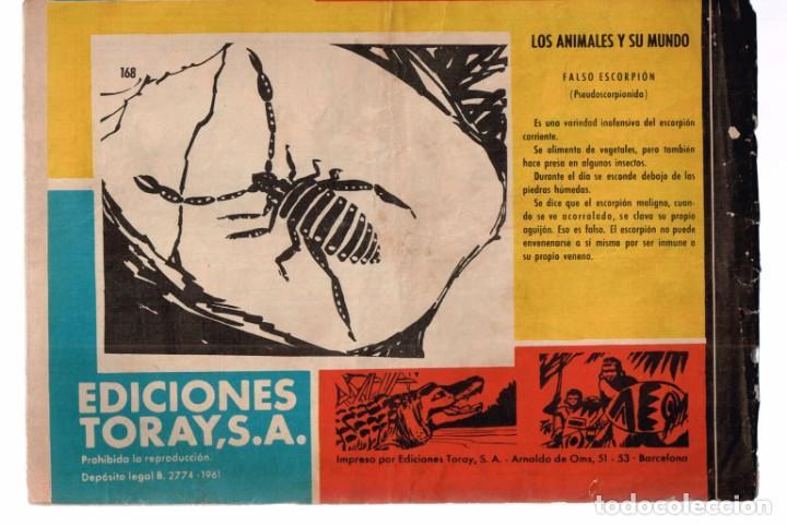 Tebeos: Hombres de Accion. Tamar Nº-168 Los Blindados de Tamar. Ediciones Toray .1961 - Foto 2 - 132494794