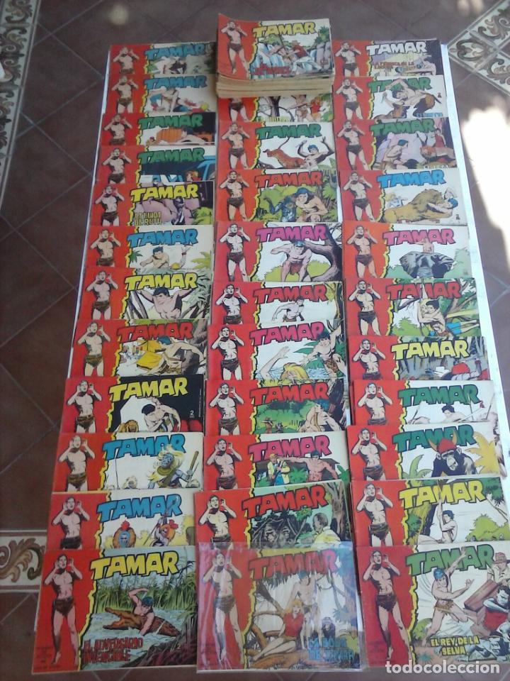 TAMAR COLECCION COMPLETA ORIGINAL SUELTA 1 AL 186 - MAGNÍFICO ESTADO, VER TODAS LAS PORTADAS, 1961 (Tebeos y Comics - Toray - Tamar)