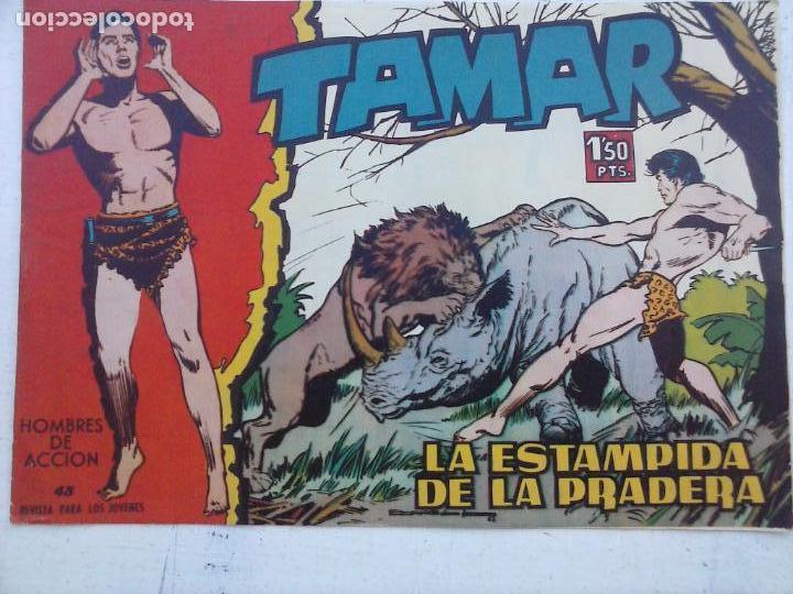 Tebeos: TAMAR COLECCION COMPLETA ORIGINAL SUELTA 1 al 186 - MAGNÍFICO ESTADO, VER TODAS LAS PORTADAS, 1961 - Foto 191 - 135844734