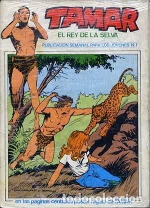 TAMAR - TORAY - COMPLETA DE 40 NUMEROS (Tebeos y Comics - Toray - Tamar)