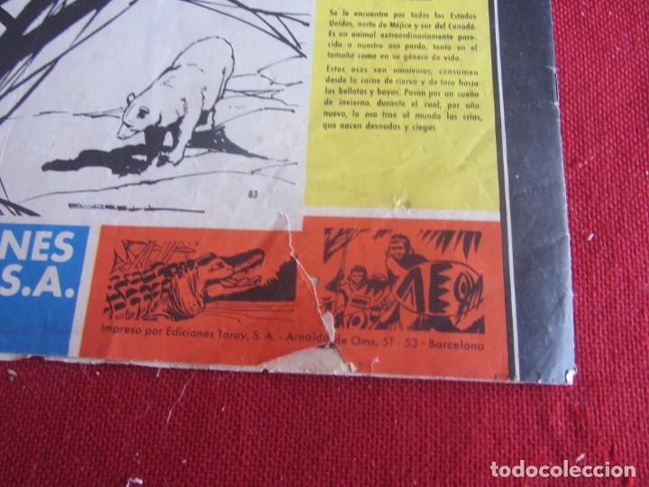 Tebeos: TAMAR Nº 83. ORIGINAL 1961 TORAY - Foto 3 - 177204203