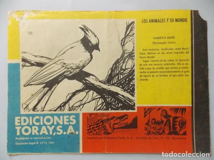 Tebeos: COMIC - TAMAR - Nº 152 , LA REDADA - EDICIONES TORAY , AÑO 1961 - ORIGINAL .. L395 - Foto 5 - 178332198