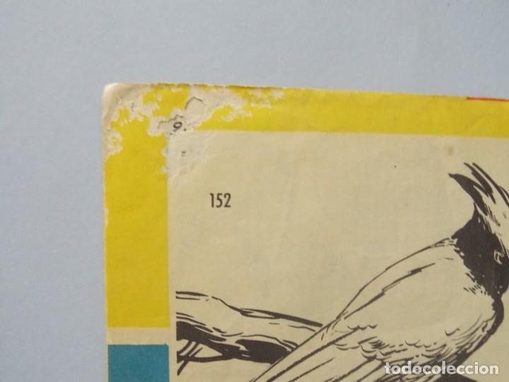 Tebeos: COMIC - TAMAR - Nº 152 , LA REDADA - EDICIONES TORAY , AÑO 1961 - ORIGINAL .. L395 - Foto 6 - 178332198