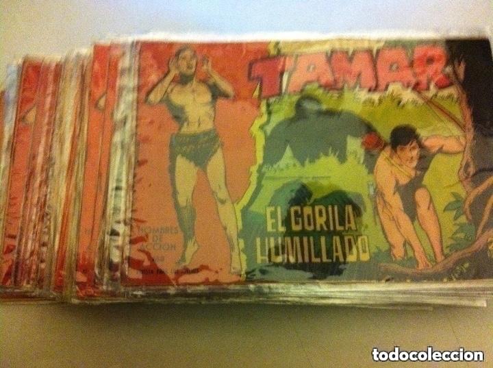 TAMAR - LOTE DE 39 EJEMPLARES (Tebeos y Comics - Toray - Tamar)