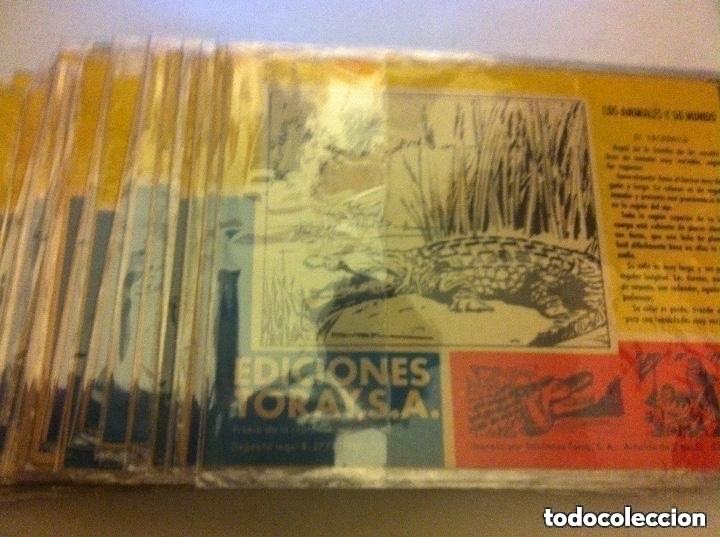 Tebeos: tamar - lote de 39 ejemplares - Foto 2 - 182091822