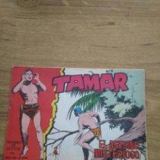 Tebeos: TAMAR Nº 171. Lote 206243648