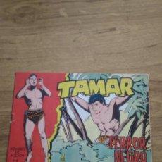 Tebeos: TAMAR Nº 172. Lote 206244072