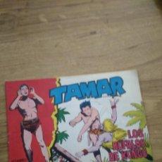 Tebeos: TAMAR Nº 174. Lote 206244432