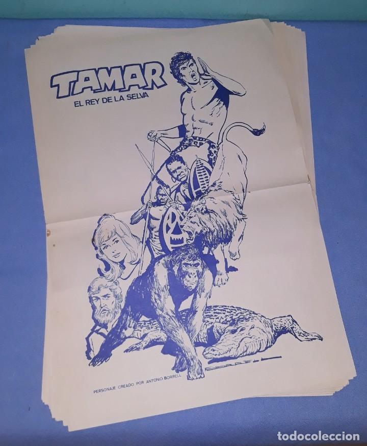 28 LAMINAS POSTER DE TAMAR ( TARZAN ) EL REY DE LA SELVA CREADO POR ANTONIO BORRELL EDICIONES TORAY (Tebeos y Comics - Toray - Tamar)