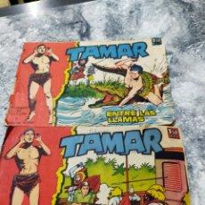 Tebeos: DOS CÓMICS TAMAR EDITORIAL TORAY. Lote 285138903