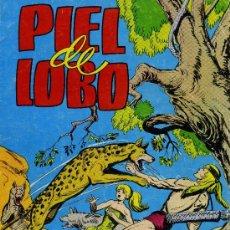 Tebeos: PIEL DE LOBO - COLOSOS DEL COMIC, Nº 6 - ED. VALENCIANA 1979. Lote 31760458