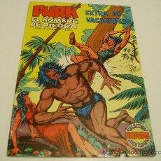 Tebeos: PURK EL HOMBRE DE PIEDRA EXTRA DE VACACIONES 1974. Lote 29272956