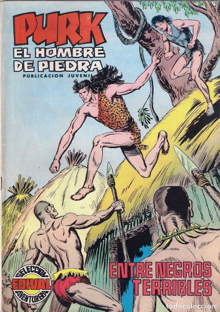 PURK, EL HOMBRE DE PIEDRA. COLOR. Nº 16 (Tebeos y Comics - Valenciana - Purk, el Hombre de Piedra)
