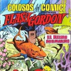 Tebeos: FLASH GORDON-COLOSOS DEL CÓMIC- Nº 15 -EL REINO SUBMARINO-GRAN DAN BARRY-CORRECTO-1980-LEAN-0474. Lote 154866110
