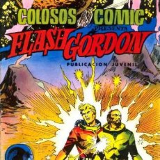 Tebeos: FLASH GORDON-COLOSOS DEL CÓMIC- Nº 36 -EL ARCA DE NOÉ-GRAN DAN BARRY-BUENO-1981-LEAN-0490. Lote 155015614