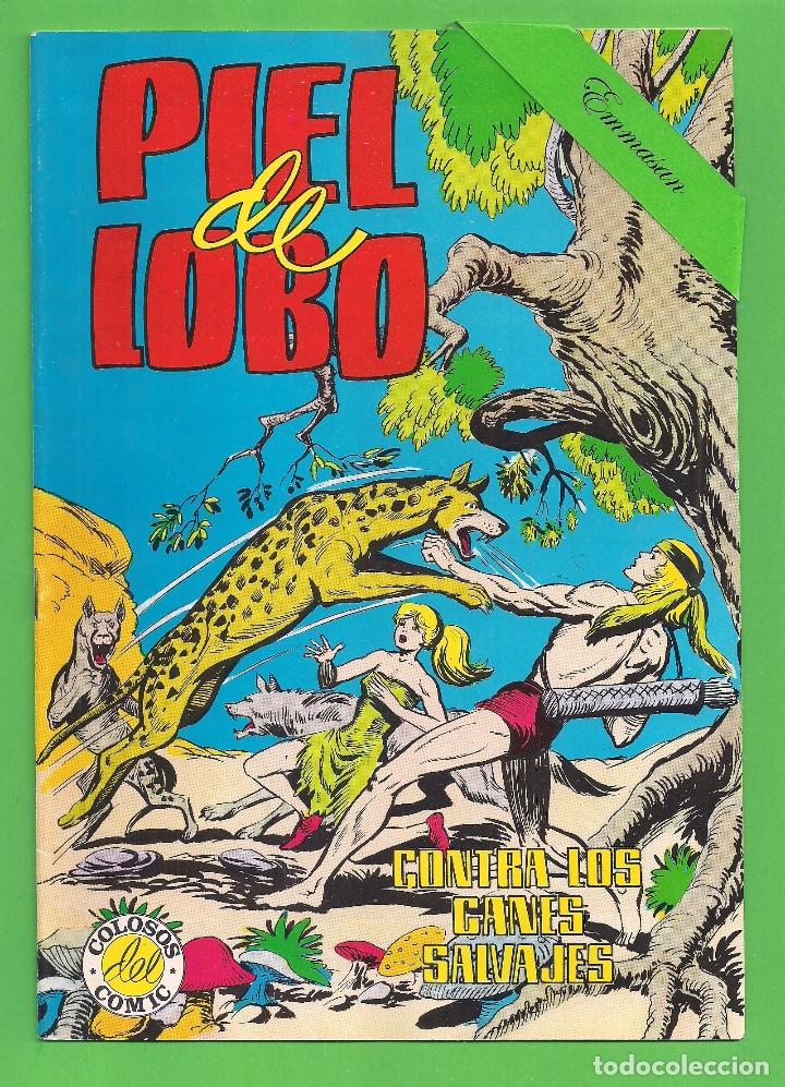 Tebeos: PIEL DE LOBO - COMPLETA DEL 1 AL 20 - VALENCIANA - (1980) - VER IMÁGENES. - Foto 6 - 177134038
