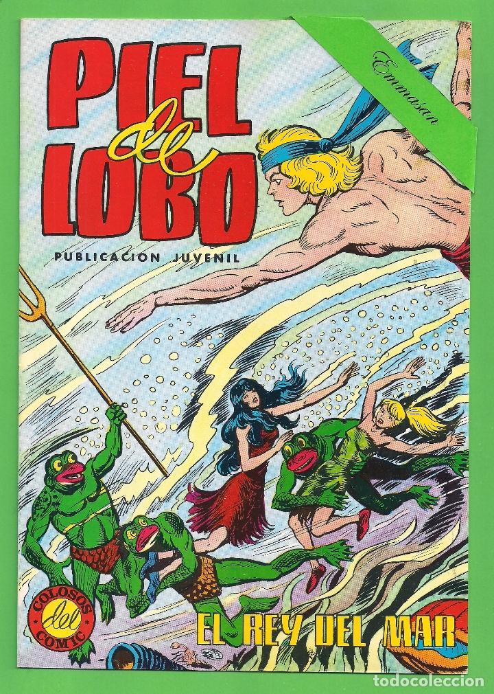 Tebeos: PIEL DE LOBO - COMPLETA DEL 1 AL 20 - VALENCIANA - (1980) - VER IMÁGENES. - Foto 11 - 177134038