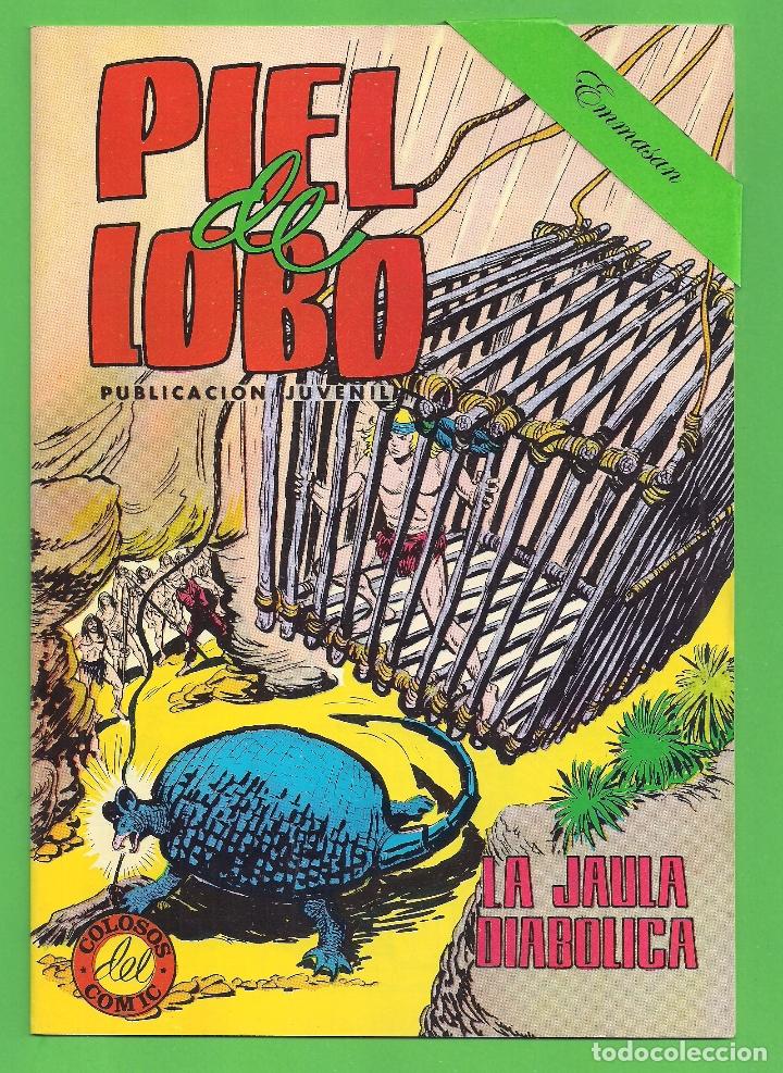 Tebeos: PIEL DE LOBO - COMPLETA DEL 1 AL 20 - VALENCIANA - (1980) - VER IMÁGENES. - Foto 15 - 177134038