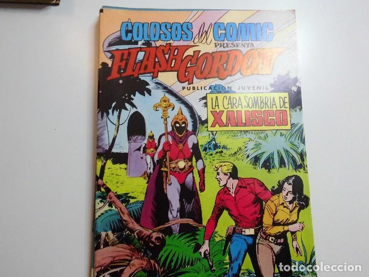 FLASH GORDON Nº 19 COLOSOS DEL COMIC (Tebeos y Comics - Valenciana - Otros)