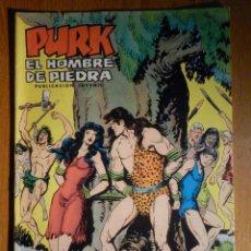 Tebeos: TEBEO - COMIC - PURK EL HOMBRE DE PIEDRA - LA CAPTURA DE PURK - Nº 81 - EDICIÓN EDIVAL . Lote 193976671