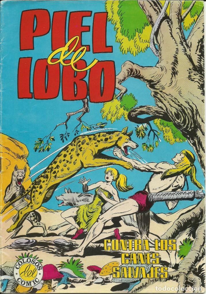 CÓMIC TEBEO PIEL DE LOBO. CONTRA LOS CANES SALVAJES. (Tebeos y Comics - Valenciana - Colosos del Comic)