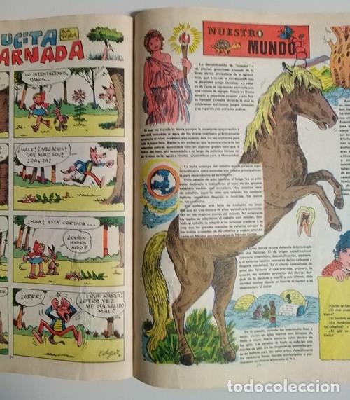 Tebeos: Gran Album de Juegos Pumby, 12 - Editora Valenciana, 13/12/1980 - Foto 17 - 137293834