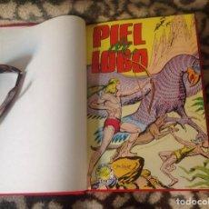 Tebeos: PIEL DE LOBO COMPLETA EN UN TOMO. Lote 260555235