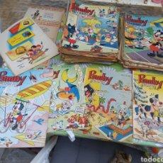 Tebeos: LOTE DE 77 COMICS DE PUMBY. Lote 276713273