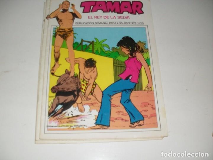 TAMAR 36.EDICIONES URSUS,AÑO 1973.REEDICION. (Tebeos y Comics - Valenciana - Otros)