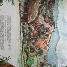 Tebeos: EL HOMBRE DE MAISINICU 1985. Lote 149697602