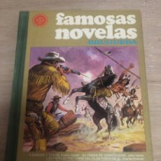 Livros de Banda Desenhada: FAMOSAS NOVELAS. Lote 180466402