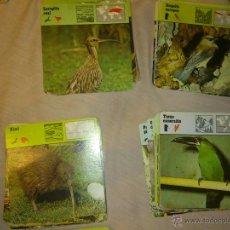 Trading Cards: LOTE DE 470 TARJETAS DE ANIMALES ZAFARI. EDITIONS RENCONTRE S.A . AÑOS 70 Y 80. Lote 131925697