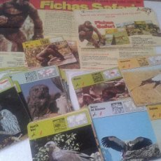 Trading Cards: LOTE 99 FICHAS FICHAS SAFARI AVES RAPACES AÑO 1978. Lote 41023497