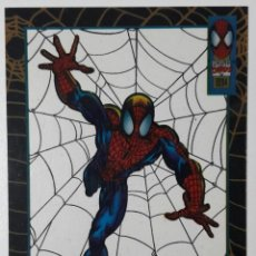 Trading Cards: THE AMAZING SPIDER-MAN FLEER 1994 CROMO 10 SPIDERMAN SUSPENDED ANIMATION TRADING CARD. Lote 68845413