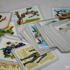 Trading Cards: LOTE DE 227 CROMOS O FICHAS DE ANIMALES FLORA FAUNA ANATOMIA CUERPO HUMANO, A IDENTIFICAR. Lote 101413819