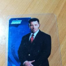 Trading Cards: WWE LAMINCARDS EDIBAS 2007 Nº21. Lote 207079625