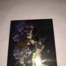 Trading Cards: TRADING CARD CONAN II ALL CHROMIUM N° 78 BY CÓMIC IMAGES. Lote 207344632