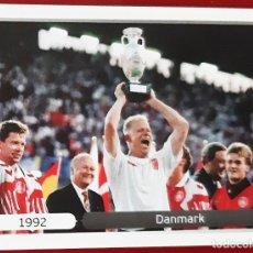 Trading Cards: CROMO PANINI EURO 2012 DINAMARCA 1992 SCHMEICHEL. Lote 271605718