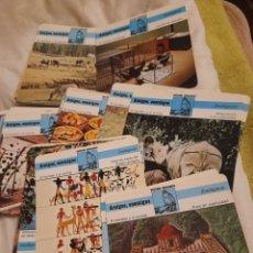 Trading Cards: 78 FICHASE ESTUDIOS ZOOLÓGICOS, AMIGOS ENEMIGOS ,EDICIONES RECONTE. Lote 275166818